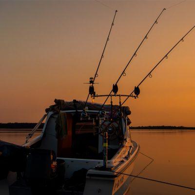 Karpfenangeln vom Boot – Ausrüstungstipps Part 2